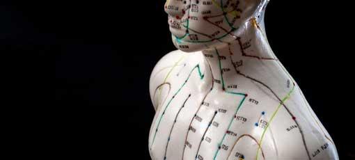 Alternative Medizin und ostasiatische Heilmethoden Konzept mit Akupunktur-Dummy-Modell mit Kopienraum. Akupunktur ist die Praxis des Einsteckens von Nadeln in das subkutane Gewebe, Haut und Muskeln